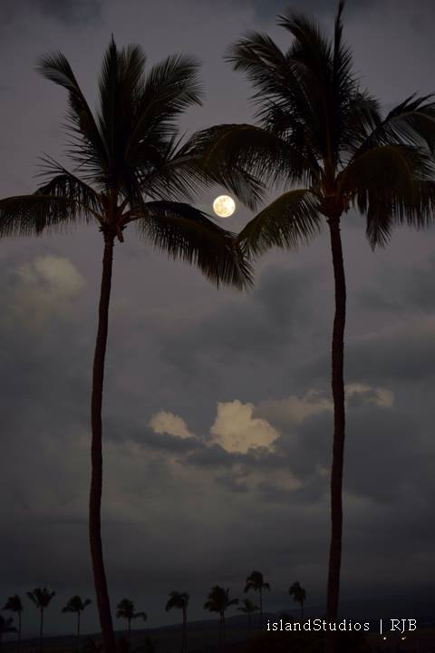 Island Studios - Moon over Hawaii